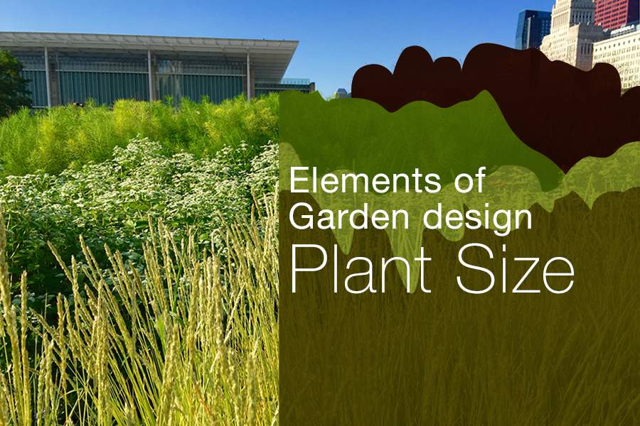 Exploring Elements of Garden Design : Plant Size