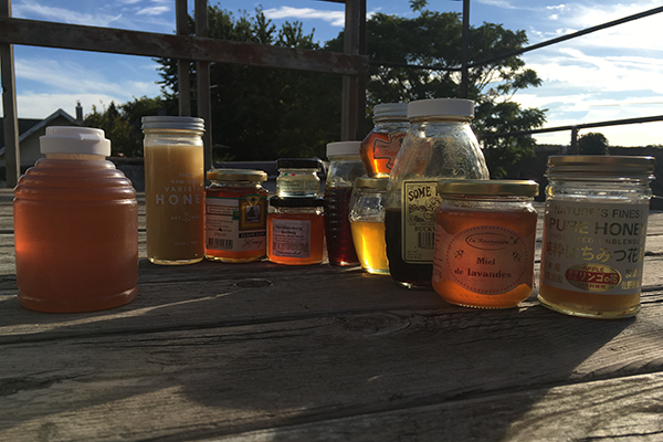 Generic honey (left) is no match for the unique tastes and flavors of local honeys straight from the hive which capture the spirit of a certain time and place.